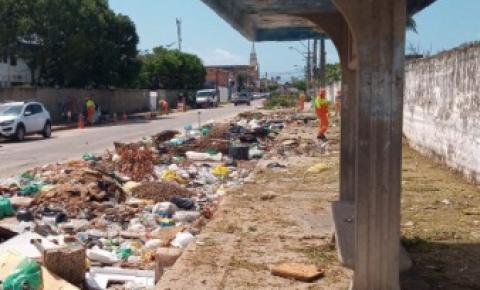 Na Ponta Grossa, Prefeitura retira 85 toneladas de resíduos e planta 120 mudas de árvores